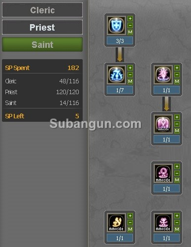 Dragon Nest Indonesia lv 70 saint build