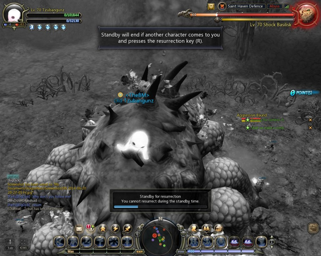 Dragon Nest Saint's Haven Defense1